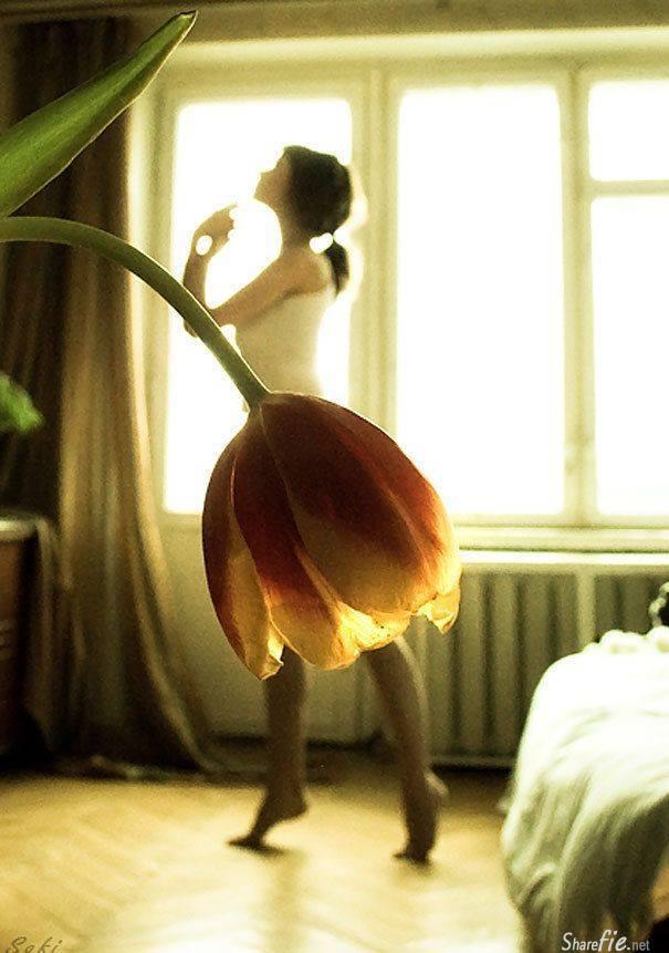 50张每个女生都会深深爱上的花瓣美裙,以真正的花当裙子,鲜艳夺目,美得令人心醉