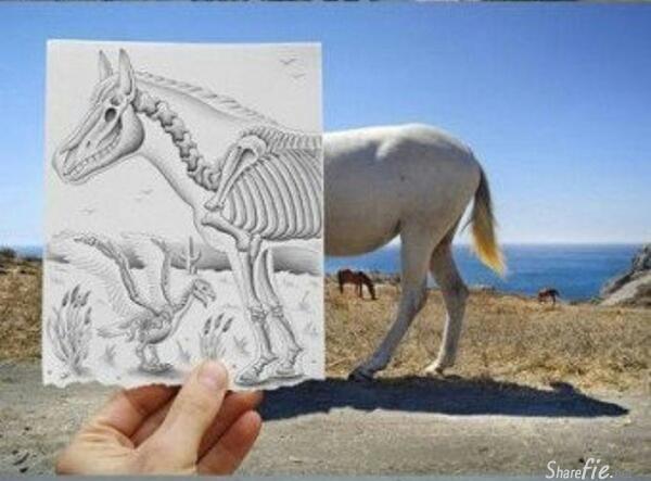 12张不一样的铅笔画作,以丰富的想像力描绘着照片的故事