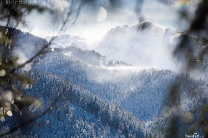 26张位于波兰与斯洛伐克的塔特拉山脉,一座座高大的山峰突兀在云雾之中时隐时现..让你置身于仙境的风景画