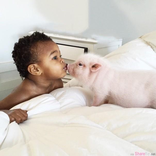 这位妈妈找来了一位非常可爱的小猪猪与女儿成为了好朋友
