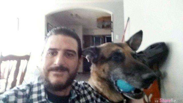 男子上网认养狗,竟发现一张惊人的照片...眼泪瞬间