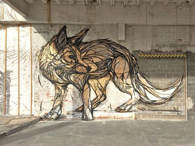 13张超美的街头涂鸦-色彩分明的动物大图刺激你的感官