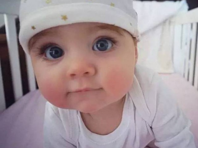 這個澳洲寶寶才8個月大就征服了全球網友,魅力完全抵擋不住。它还有样东西特别长