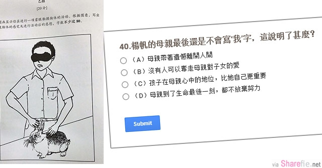 大马小学UPSR中文考题难度太高  连中文系博士都被考倒(附上题目 看你能答对多少题?)