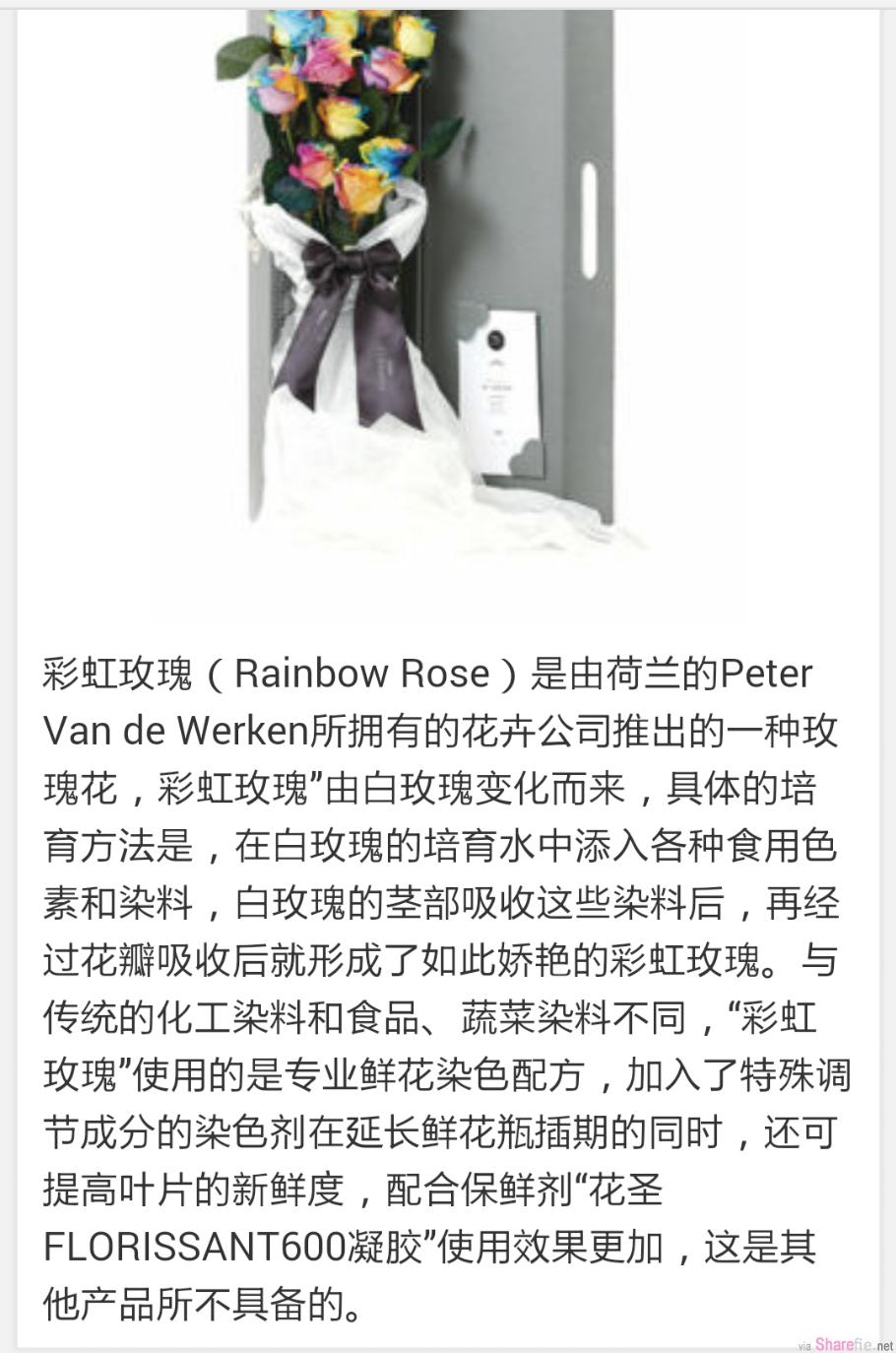 小三anna chin收到彩虹玫瑰却再次展现她无知的一面,其实彩虹玫瑰。。。看这里有教学教你如何制作彩虹玫瑰(它并不是奇特品种)