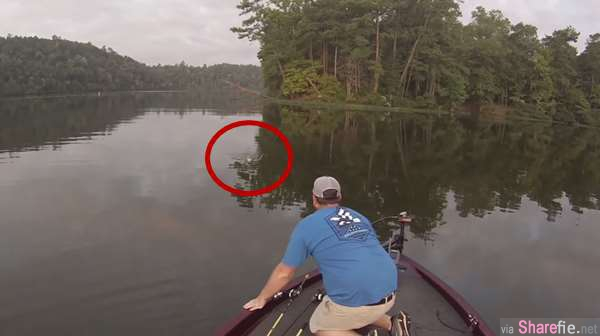 """这两名男子结伴出游钓鱼,却意外捕获两只超萌的小""""生物"""""""