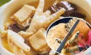 舌尖上的罪孽,中国10大超噁心菜肴!太残忍了!