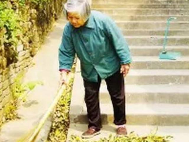 一位高贵女总经理 碰到一个扫地的老太太,却因为 老太太的「一句话」马上让她 丢了工作...