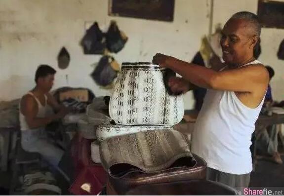 真皮包包的制作过程竟然如此血腥残忍,看完你还会买吗?
