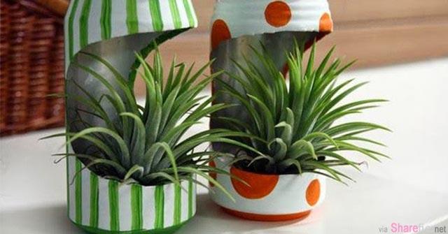 新型吊兰花盆的DIY方法,自己亲手做的总比外面买的都好看