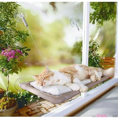 只要这3样家里就有的材料!教你DIY超实用又可爱的「猫帐篷」