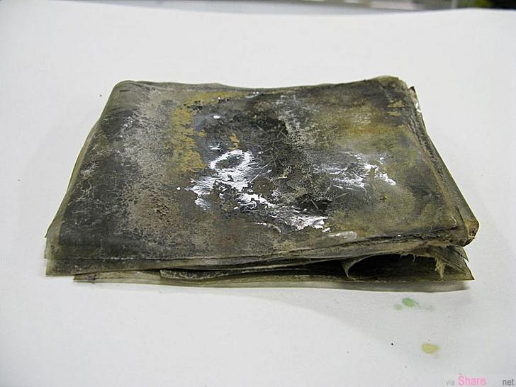 南极 100年前 22张底片,洗出来后震惊全世界!太不可思议了...