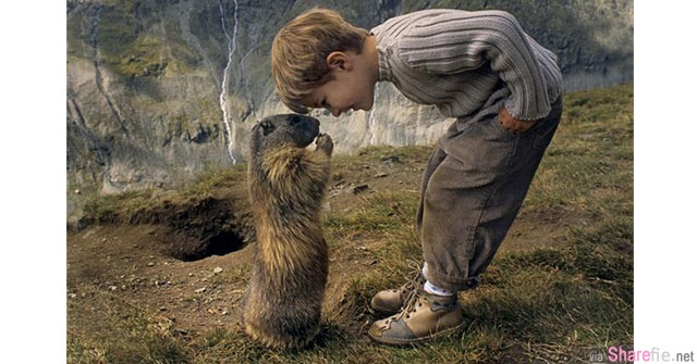 小男孩和土拨鼠约定好「一年一会」...连续八年了土拨鼠从来没有忘记过