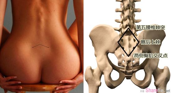 如果你的腰后有这两点「凹陷」,你一定要知道的「性」福美满