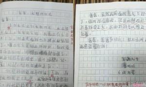 爸爸,当你看到这封信的时候,我已经不在了?小学生作文父亲节爆红
