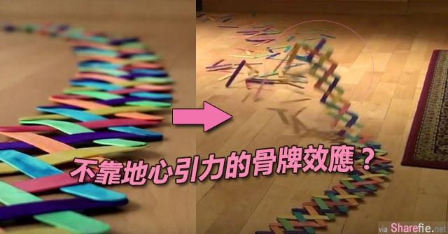好奇特的骨牌效应 ! 这个像是蛇身的冰棒棍骨牌竟然不是推倒而是飞起来