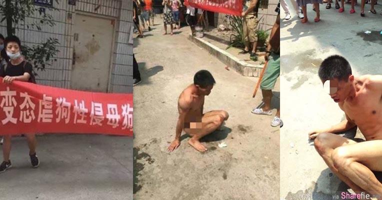 大陆四川变态男不只性侵母狗 还成立群组逼狗为娼 遭民众暴打全裸游街示众