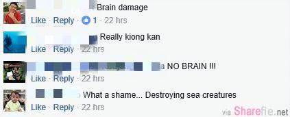x国脑残游客放肆破坏大马海底珊瑚!光明正大破坏我国生态环境! 网友:那个蓝色布条暴露了身份