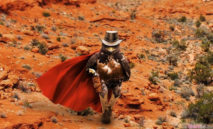 摄影师意外拍下这张老鹰宛如人类走路的姿态, 结果PS神人恶搞让已经很有霸气的老鹰更加霸气十足