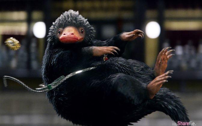 电影《怪兽与牠们的产地》里的那只玻璃兽,原来现实中真有其「兽」 网友:「立马订机票!」