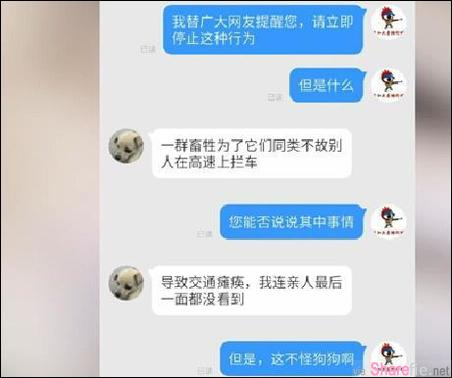变态人渣!中国网友直播解剖活狗 原因竟然是为了报復爱狗人士阻路