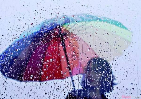 大雨过后有两种人 你是哪一种?