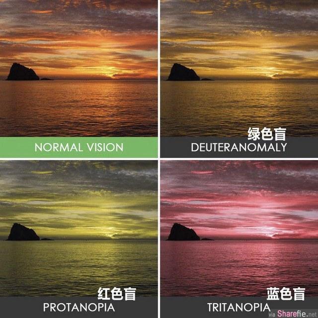 原来色盲眼中的世界是这样的!和我认知的完全不一样