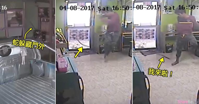 泰国男子网咖开门突然被一条蛇「袭击」 惊悚画面笑翻网友