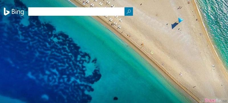 这张微软Bing搜索主页壁纸gg了 原因是沙滩上出现这条东西