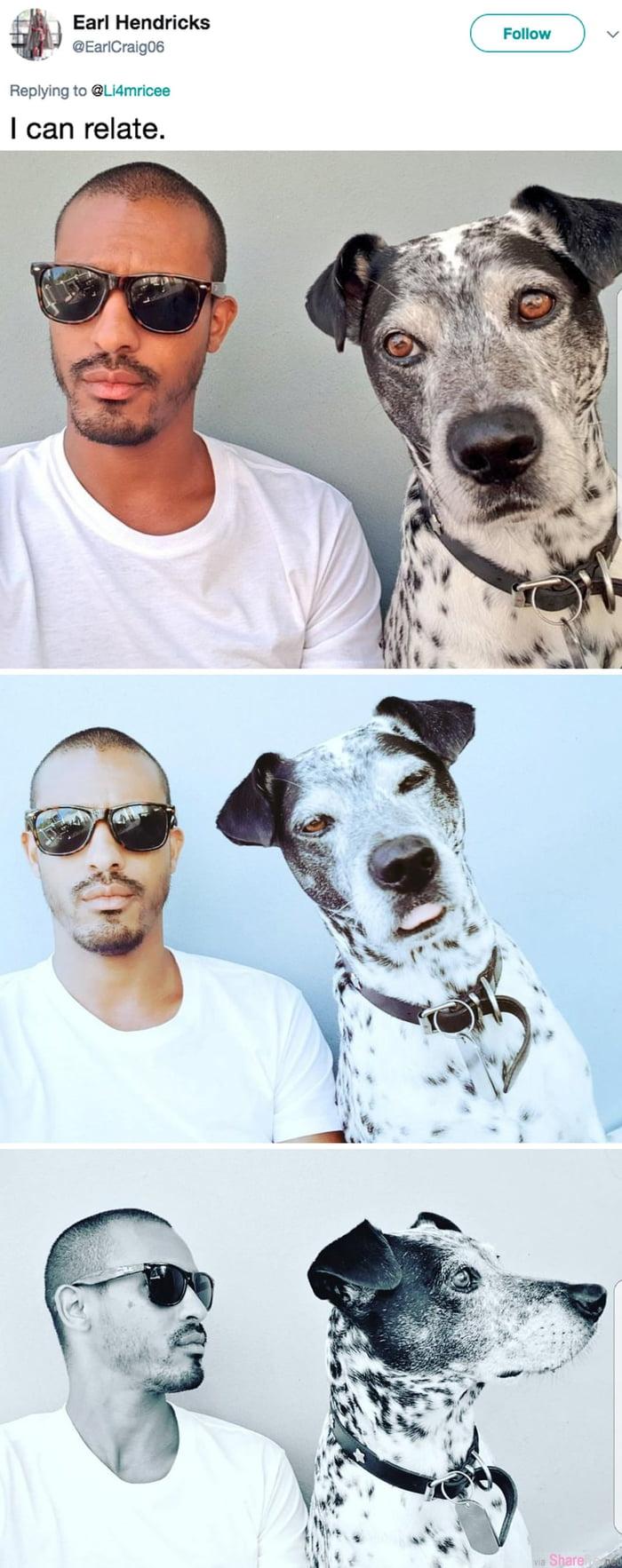 帅哥上传狗狗模仿自己的照片,意外掀起动物神模仿萌翻网友